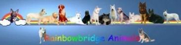 RainbowbridgeBanner2.jpg